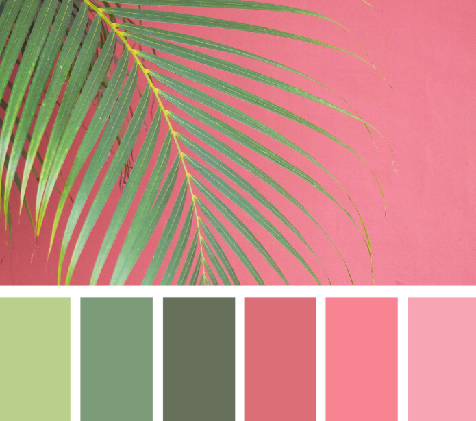 pink_and_green